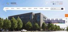网站建设定制政府网站电子政务的整合集成